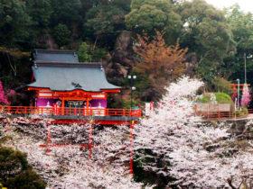御館山稲荷神社-病気平癒
