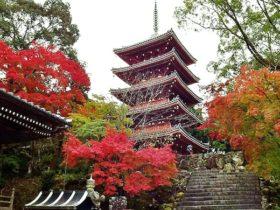 竹林寺 高知県