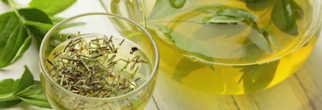 予防緑茶 癌 予防